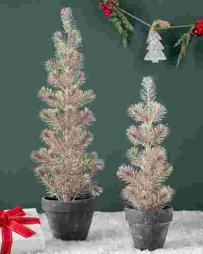 Gold Tabletop Potted Spruce Set of 2 by Balsam Hill