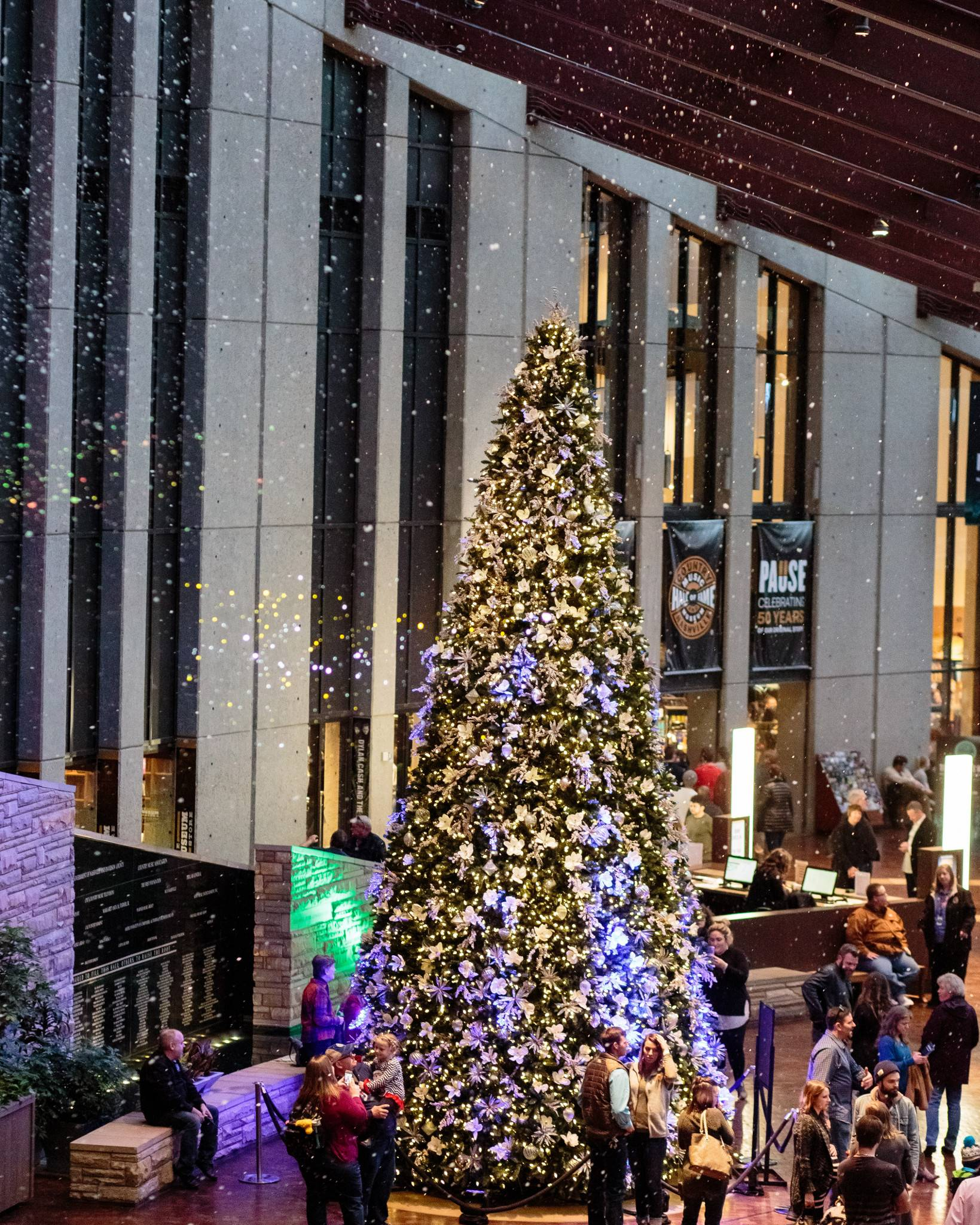 Rockefeller Pine Artificial Christmas Tree Balsam Hill Wire Lights In Addition Led Wiring 4 Close Esc Candlelight