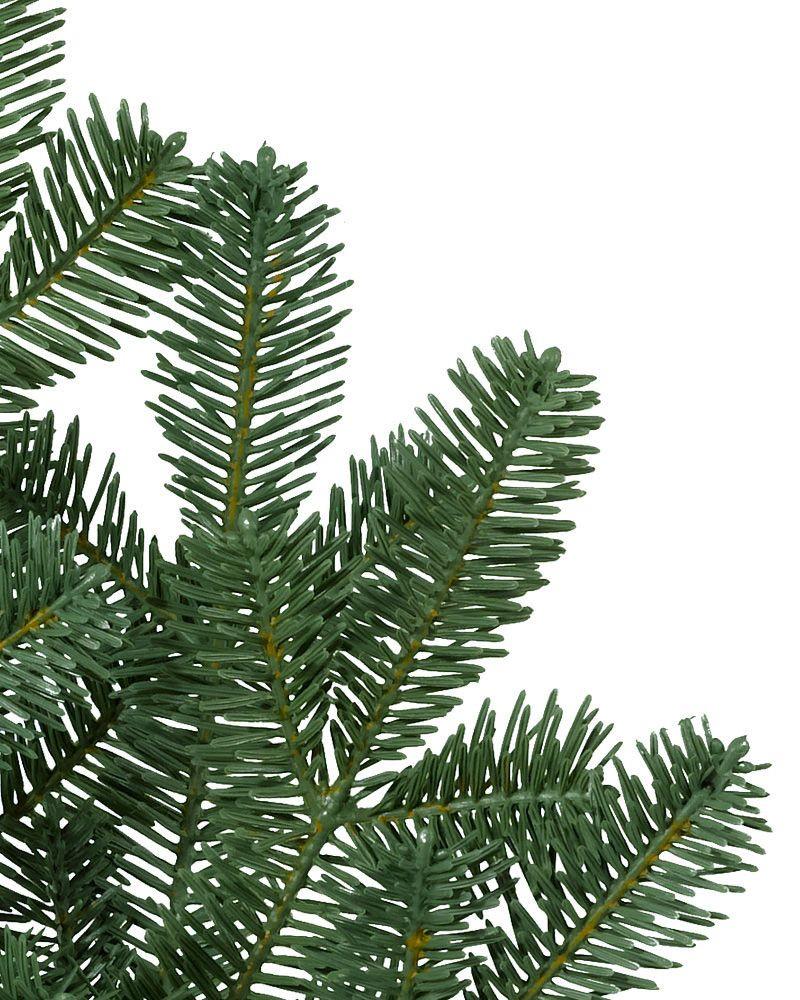... BH Balsam Fir Tree 5 ...