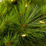 Monterey Pine Foliage by Balsam Hill