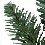Classic Blue Spruce Tree PDP Foliage