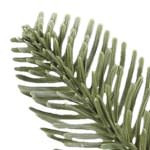 Noble Fir PDP Foliage