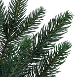 Colorado Mountain Spruce Potted by Balsam Hill Detail