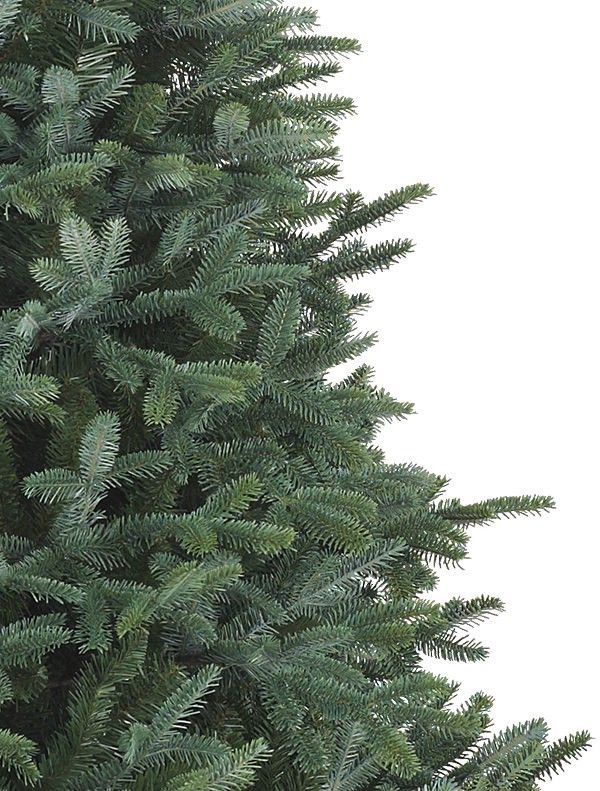 Balsam Christmas Trees Sale