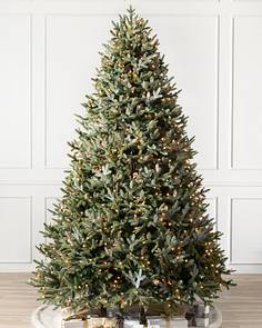 bh fraser fir tree child 1 - 7 Christmas Tree