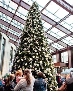 15 Ft Christmas Tree.15 To 30 Foot Commercial Artificial Christmas Trees Balsam