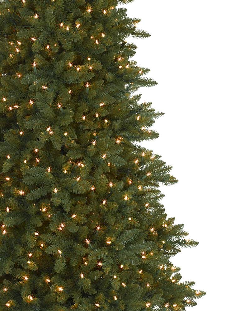 Berkshire Mountain Fir Christmas Tree Balsam Hill Lights Circuit Diagram In Addition Light 2