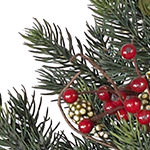 Norway Spruce Holiday Potted  PDP Foliage