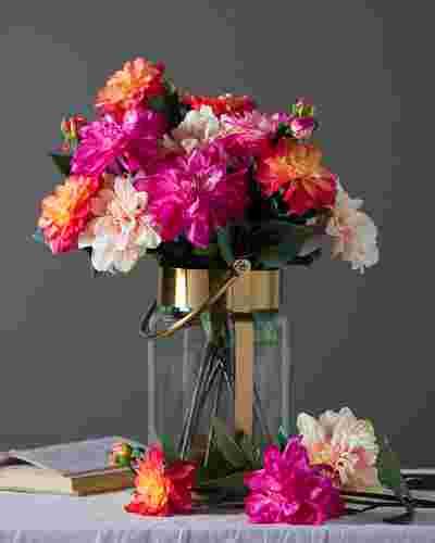 Dahlia Flower Stems Main