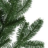 BH Fraser Fir  Narrow Tree-5