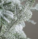 Frosted Alpine Balsam Fir by Balsam Hill Detail
