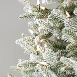 Frosted Balsam Fir by Balsam Hill Detail