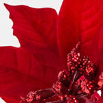 Holiday Poinsettia PDP Foliage