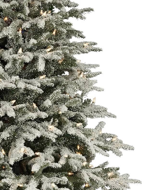 Frosted Fraser Fir Narrow Artificial Christmas Tree | Balsam Hill