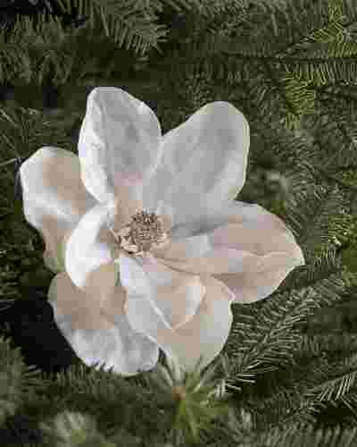 Ivory Magnolia Picks, Set of 12 Main