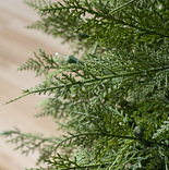 Cedar Topiary by Balsam Hill Detail