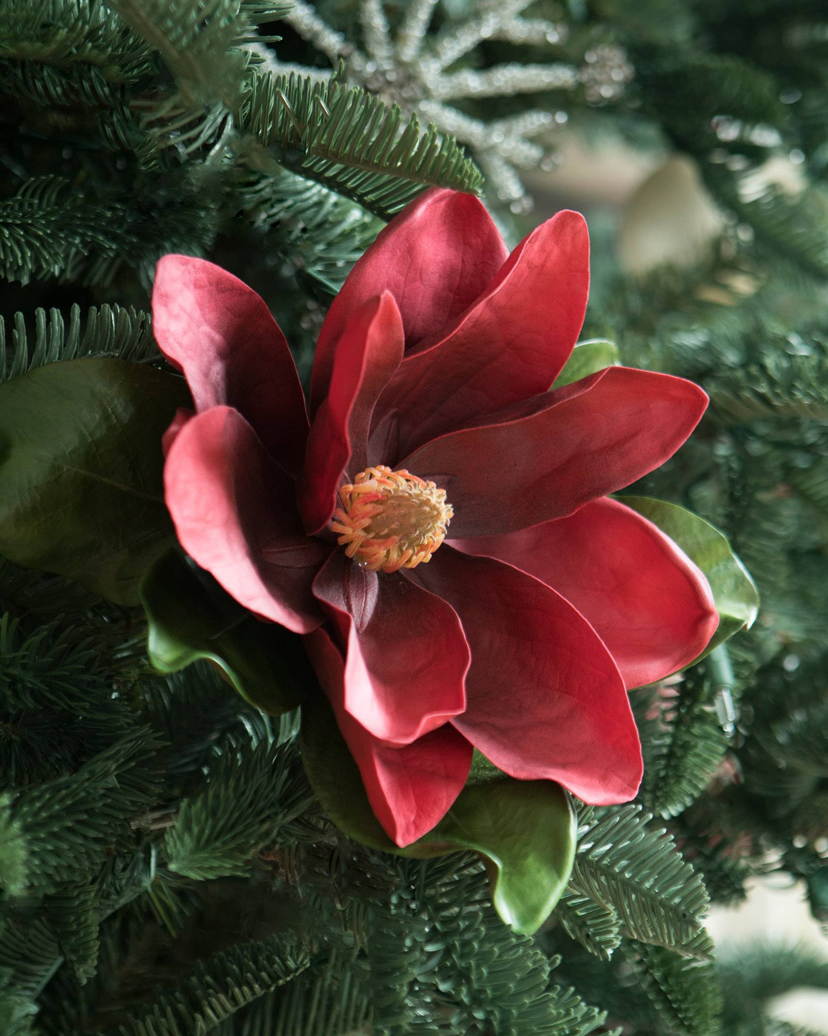 Magnolia Flower Stems Balsam Hill