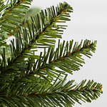 Vancouver Spruce by Balsam Hill