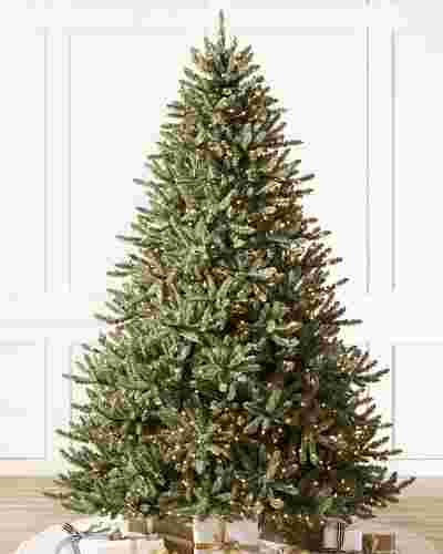 Classic Blue Spruce by Balsam Hill SSC 10