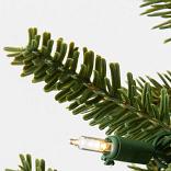 BH Fraser Fir Foliage by Balsam Hill Foliage