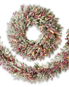 Red Berry Frosted Fraser Fir Foliage
